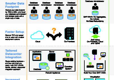 SAP_infographic